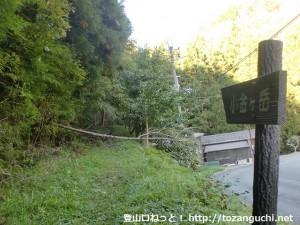 小金ヶ岳登山道入口から登山道を見る