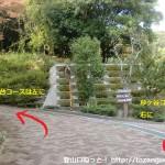五月山公園内の杉ヶ谷コースと五月台コースの分岐