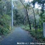 塩尾寺の手前の林道
