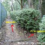 阿武山の登山道から阿武山古墳に入るところ