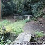 金竜寺跡に行く途中の登山道入口