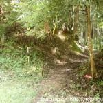 南河内グリーンロードの倉掛トンネル手前にある府庁山への登山道入口