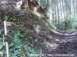 府庁山の登山道入口(クヌギ峠登り口)