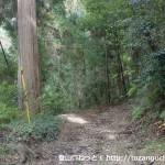 南海電鉄の天見駅から旗尾岳の登山口に行く手前で林道に入るところ