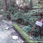 旗尾岳の登山道入口にある小さな橋にある旗尾岳を示す道標
