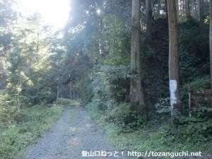 東條山の登山道に続く大住谷林道