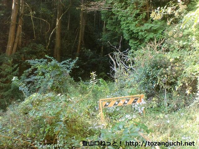 石見川口バス停裏手にある十字峠へ続く林道