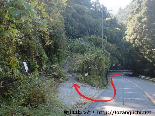国道310号線から神福山の林道に入るところ