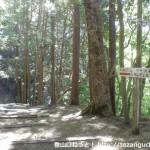 千早城の本丸跡(千早神社本殿)右側にある金剛山の千早本道への登山道入口
