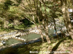 金剛山の登山口となる妙見谷林道入口そばにある鱒釣り場