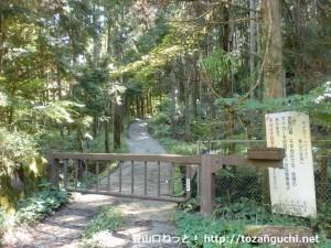 高谷山の登山口(千早峠に向かう林道の入口)