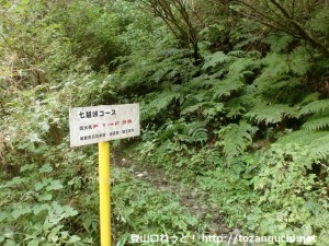 大岩谷林道の車止めゲートの少し先にある七越峠の登り口にエッチしてある七越峠コースの案内板