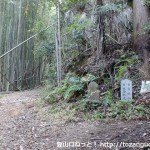 塔原の和泉葛城山登山口前の林道