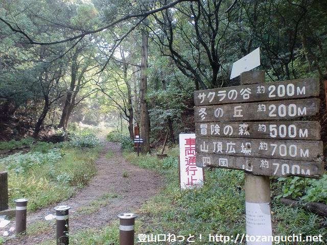 高森山の登山口から見る登山道(和歌山市森林公園)