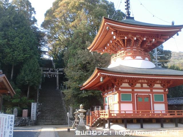 慈尊院の多宝塔前(九度山)
