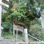 高野山町石道の入口(慈尊院)