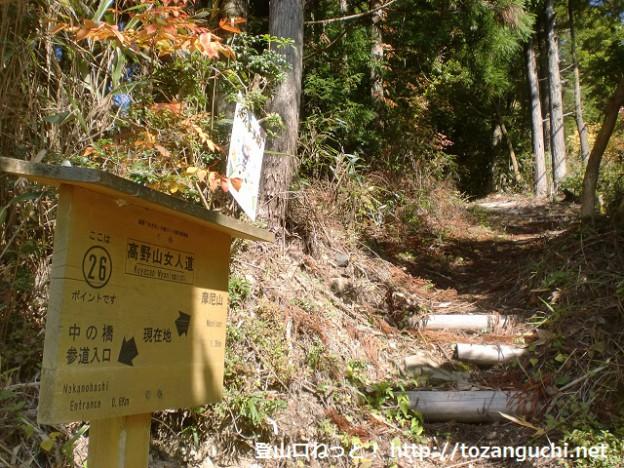 桜峠下の摩尼山・楊柳山登山口(高野山女人道の登山道)