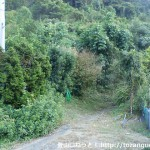別所越えの登り口(海南市)