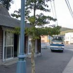 鶏知宮前バス停(対馬交通)の画像