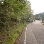 桃の木バス停(対馬交通)の画像