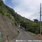 なかつ平成の森入口にある大クス前からなかつ平成の森への林道を見る