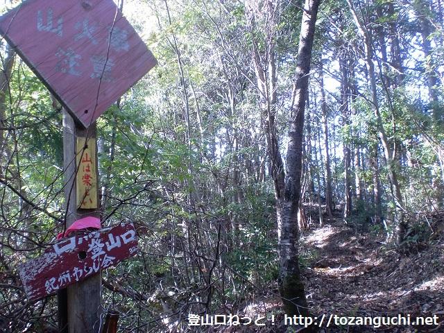 白馬山の登山口から見る登山道(日高川町)