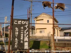 JR笠田駅前のイノシシ生け捕り手づかみイノシシ肉直売所