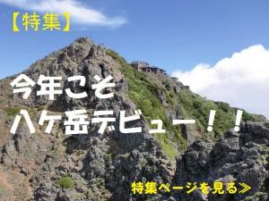 今年こそ八ケ岳デビュー