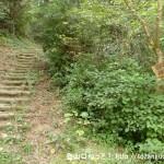 窓ヶ岳の奥畑(平治林道側)の登山口