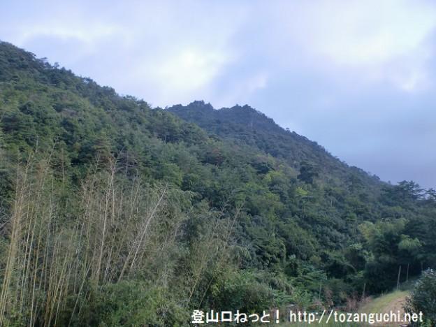 南登山口付近から見る鎌倉寺山(広島)の南峰あたり