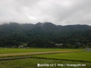 西側山麓から見る神ノ倉山(鍋谷城址)