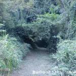 木村城址の登り口