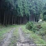 黒石山の登山口に向かう林道(東吉野村瀧野)