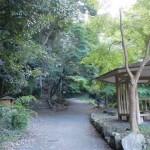交野山・源氏の瀧の入口にある東屋から登山道を望む