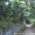 掃守神社(天羽雷命神社)の本殿左にある二上山への登山道