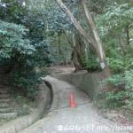 掃守神社(天羽雷命神社)の左側に延びる二上山への登山道に続く道