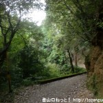 當麻寺から祐泉寺に行く途中の林道に入ったところ