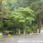 不動滝前の大峠への林道入口