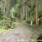 大峠(経ガ塚山)に向かう林道