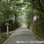 大神神社の手水舎から狭井神社に向かう途中の森の中の小路