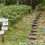 長尾峠の後古光山、古光山登山口から見る登山道
