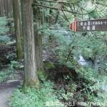 三峰山の不動滝ルート入口から見る登山道