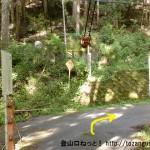川上村の柏木地区にある吊り橋を渡ったところ