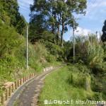 川上村の柏木地区にある吊り橋を渡った先の民家の下の小路