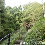 神ノ谷の金剛寺下の階段