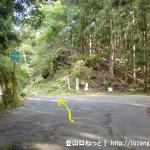神ノ谷在所の峠の分岐(神ノ谷林道)