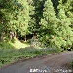 神ノ谷林道の東谷出合