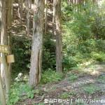 上葛川口(十津川村)にある大峯奥馳道の入口から見る登山道と道標