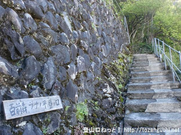 熊野萩の百前森山・ブナの平登山口から見る登山道