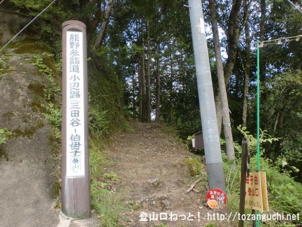 三田谷の伯母子峠登山口(伯母子岳・熊野古道小辺路)